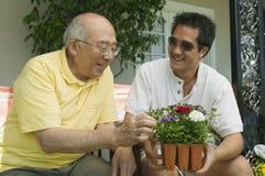 Homens que olham o potenciômetro de flor Imagem de Stock Royalty Free