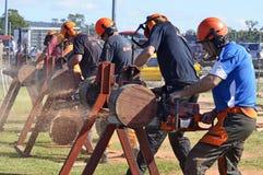 Homens resistentes que demonstram logs chainsawing na feira do país fotos de stock royalty free