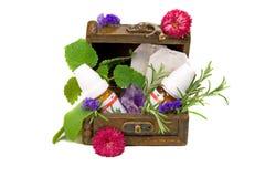 Homeopatía Foto de archivo libre de regalías
