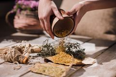 Homeopathic alternative medicine. Medical therapy. Ecology background closeup, healthy ingredient, homemade herbal tea preparation stock images