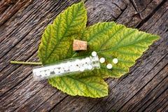 Homeopathic globules Royalty Free Stock Photos