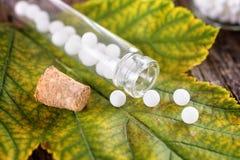 Homeopathic globules royalty free stock image