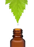 Homeopathic herbal medicine Stock Photo