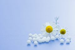Homeopathic medication Royalty Free Stock Image
