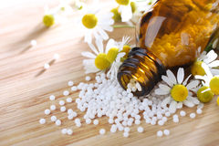 Homeopathic medication with chamomile globules Stock Photography
