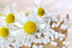 Homeopathic medication with chamomile globules Royalty Free Stock Photo