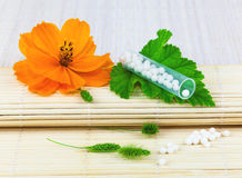 Homeopathic medication on the leaf with flower. On the mat Royalty Free Stock Photos