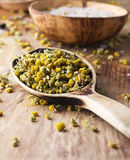 Homeopathic medicine. Stock Photos