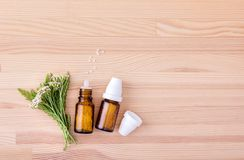 Homeopathic medicine of yarrow. Top view of Homeopathic remedy with flowering yarrow with a wooden background Stock Photos