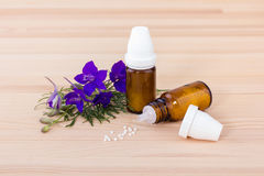 Homeopathic medicines Stock Photography