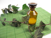 homeopathic murgrönapills Fotografering för Bildbyråer