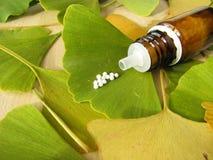 homeopathic pills för ginkgo royaltyfri bild