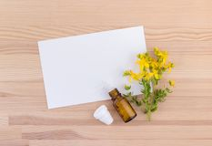 Homeopathic remedy with St. John`s wort. Homeopathic remedy with flowering St. John`s wort with white copy space on a wooden background Stock Photography