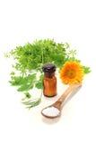 Homeopathie royalty-vrije stock foto