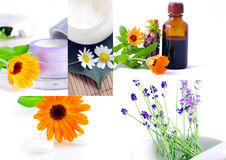 homeopathie Stock Foto's