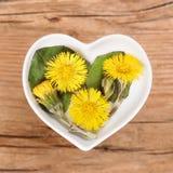 Homeopathie en het koken met paardebloem Stock Fotografie