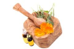 Homeopathische Behandelingen - Calendula Officinalis Royalty-vrije Stock Fotografie