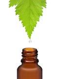 Homeopathische kruidengeneeskunde Stock Foto