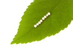 Homeopathy. Some pills on a green leaf - homeopathy Royalty Free Stock Photography