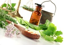 homeopathy Arkivfoto