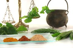 homeopathy arkivfoton