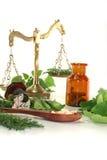 homeopathy royaltyfri foto