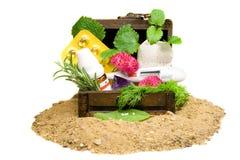 homeopathy Стоковая Фотография RF