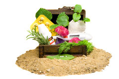 homeopathy Royaltyfri Fotografi