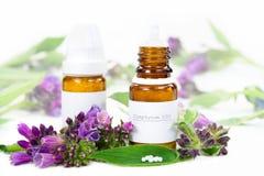 Homeopathy. Symphytum globule on white background Stock Photos