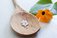 Homeopathy alternativ medicine Royalty Free Stock Images
