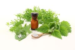Homeopathy with apothecary jar Stock Images