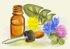 Homeopathy. Bottle and medicinal flowers Royalty Free Stock Photography
