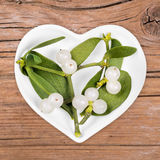 Homeopathy and cooking with mistletoe Royalty Free Stock Images
