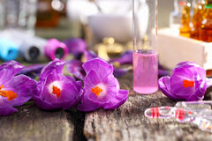 Homeopathy, crocus and ampoules. In the laboratory Royalty Free Stock Photo