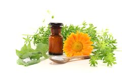 Homeopathy with globules Stock Photography