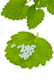 Homeopathy. Globules as alternative medicine Royalty Free Stock Image