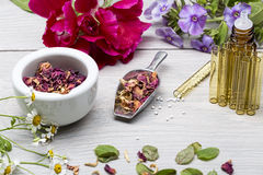 Homeopathy lab with herbals Stock Images