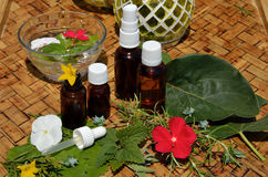 Homeopathy remedies Stock Image