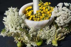 Homeopati - den alternativa medicinen Arkivfoto
