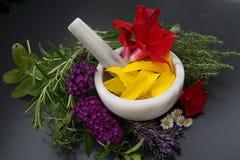 Homeopati - den alternativa medicinen Arkivfoton