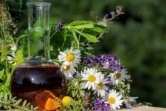 Homeopati och matlagning med medicinska växter Arkivbilder