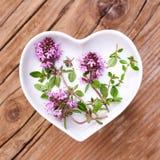 Homeopati och matlagning med timjan royaltyfri bild