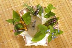 homeopatia Obrazy Stock