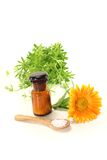 Homeopatia com marigold Foto de Stock Royalty Free