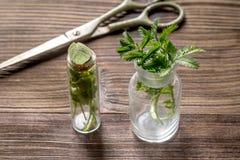 homeopatia Sklep w górę leczniczych ziele Ziele w szkle na drewnianym stołowym tle Fotografia Royalty Free