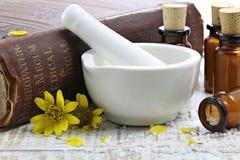 Homeopatiska arnikapreventivpillerar arkivbilder
