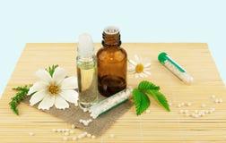 Homeopatyczny lekarstwo z kwiatami i liść Fotografia Royalty Free