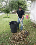Homeowner Raking Leaves In The Front Yard.  stock photos