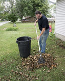 Homeowner Raking Leaves In The Front Yard Royalty Free Stock Photos