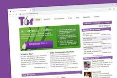 Homepage för tor- eller The Onion Routerwebsite stock illustrationer